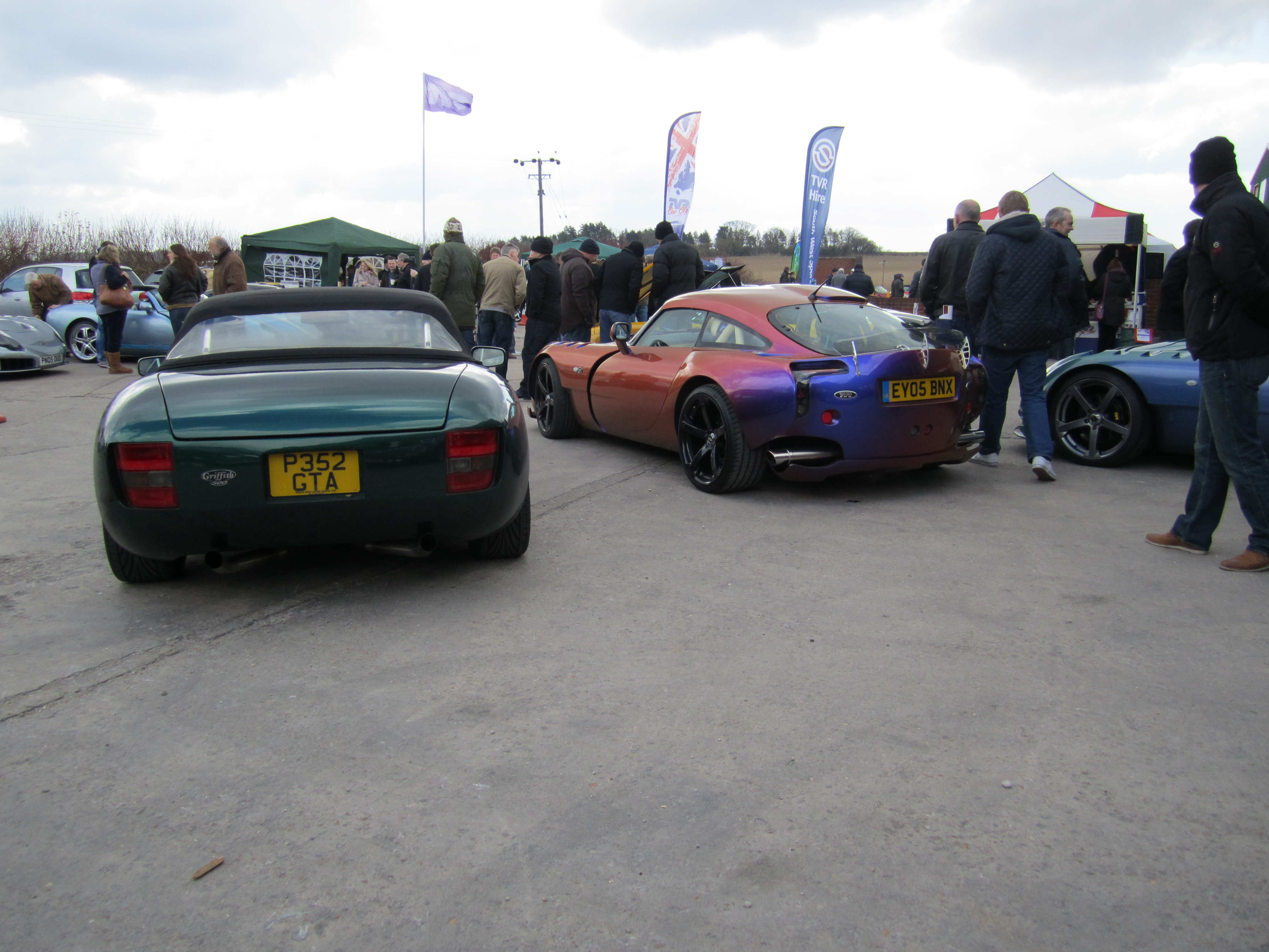 Green paint and Chameleon TVR's